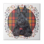 Scottish Terrier on Tartan Tile