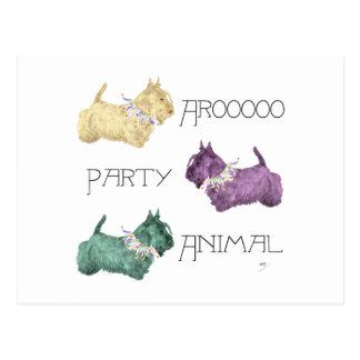 Scottish Terrier Party Animals Postcard