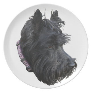 Scottish Terrier Plate