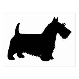 scottish terrier postcard