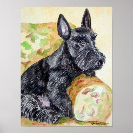 Scottish Terrier Print Poster