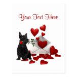 Scottish Terrier  Puppy Red Rose Valentine Design Postcards