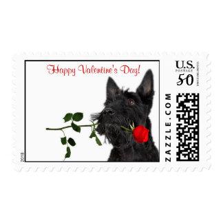 Scottish Terrier  Red Rose Valentine Stamp #3