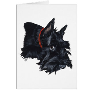 Scottish Terrier Resting Greeting Card