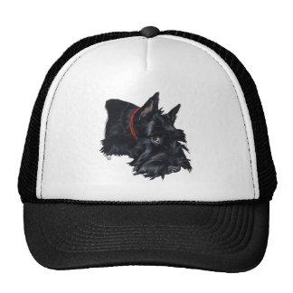 Scottish Terrier Resting Mesh Hats