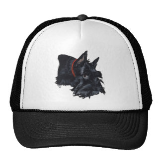 Scottish Terrier Resting Trucker Hat