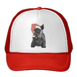 Scottish Terrier Santa Hat Christmas