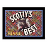 Scottish Terrier Scottys Best Dog Postcard