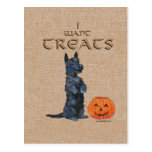 Scottish Terrier Sits Up for Treats! Postcard