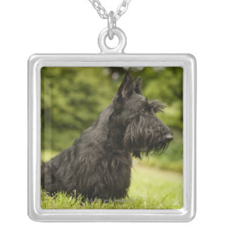 Scottish Terrier Square Pendant Necklace