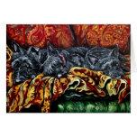 Scottish Terrier Trio on Sofa Card