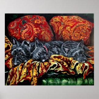 Scottish Terrier Trio Poster