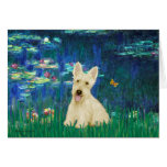 Scottish Terrier (W5) - Lilies 5 Greeting Card