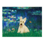 Scottish Terrier (W5) - Lilies 5 Post Cards
