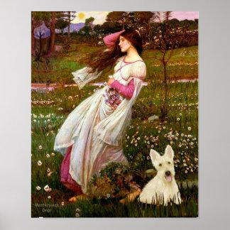Scottish Terrier (W5) - Windflowers Print