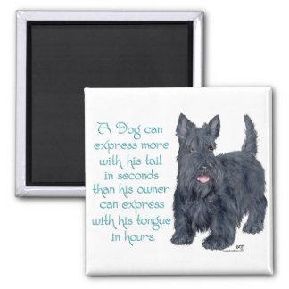 Scottish Terrier Wit & Wisdom - Talking 2 Inch Square Magnet