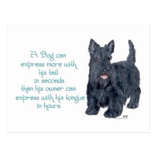 Scottish Terrier Wit & Wisdom - Talking Postcard