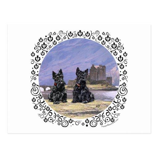 Scottish Terriers at Eileen Donan Castle Postcard