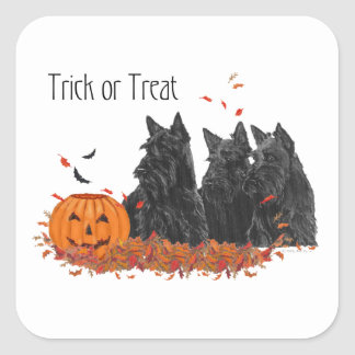 Scottish Terriers Halloween Square Sticker