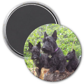 Scottish Terriers Fridge Magnets