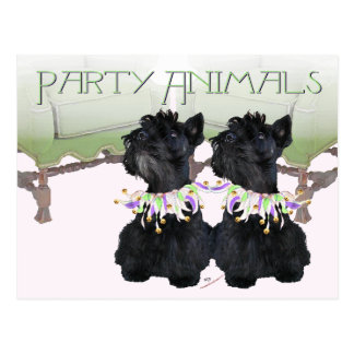 Scottish Terriers Party Animal Postcard