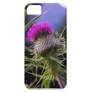 Scottish Thistle iPhone 5 Case