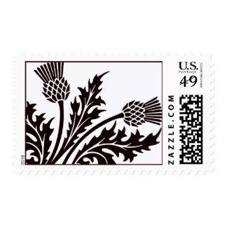 Scottish thistle postage stamp