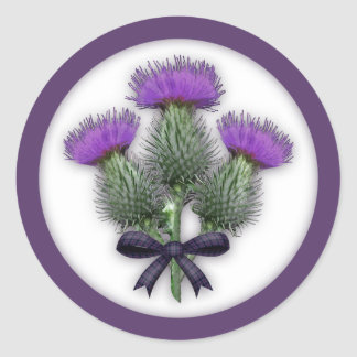 Scottish Thistles with Tartan Bow Large Stickers
