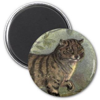 Scottish Wildcat Art magnet
