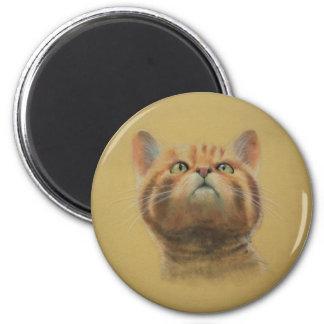 Scottish Wildcat Fridge Magnets