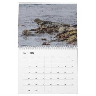 Scottish Wildlife, Wild and free Calendar