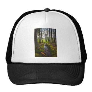 Scottish Woodland Stream Trucker Hat