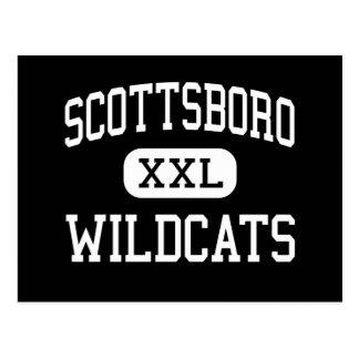 Scottsboro - gatos monteses - alto - Scottsboro Postales