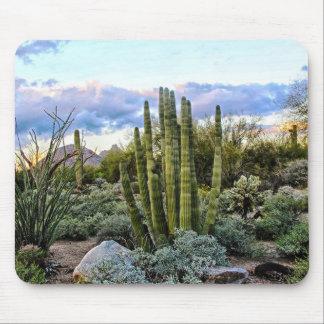 Scottsdale Succulent Sunset Mouse Pad