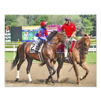 """""""Scotus"""" out of a Seattle Slew Mare Named Divine Photo Print"""