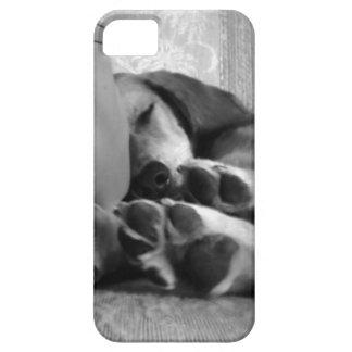 Scout iPhone SE/5/5s Case