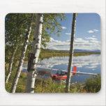 Scout on Kanuti Lake Mouse Pads