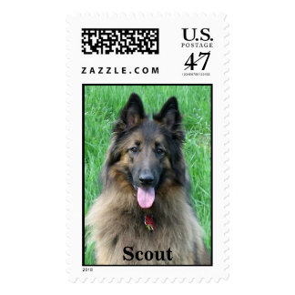 Scout Postage
