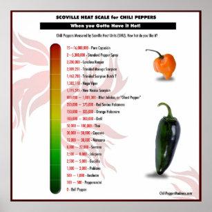 Chili Pepper Art Amp Wall D 233 Cor Zazzle