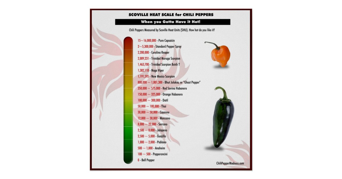 scoville heat scale for chili peppers poster. Black Bedroom Furniture Sets. Home Design Ideas