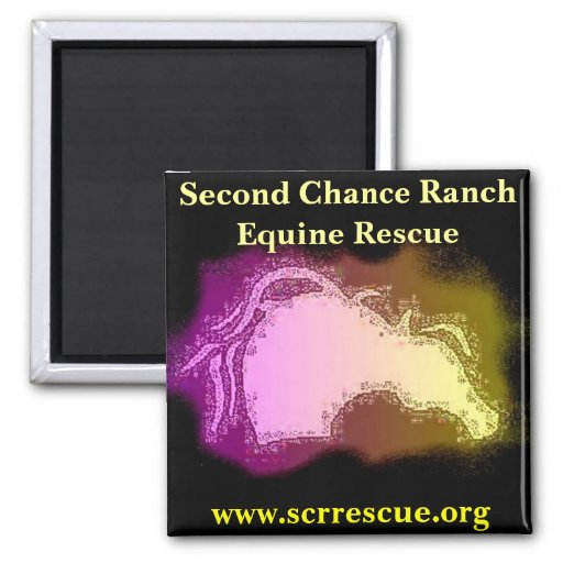 SCR Magnet