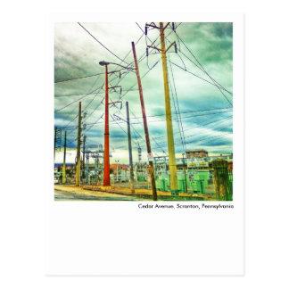 Scranton PA Postcard-Cedar Avenue Postcard