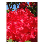 Scrapbooking paper Red Rhodies Summer Custom Letterhead