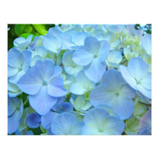 Scrapbooking Theme paper Blue Hydrangea Flowers