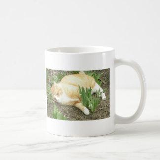 Scrapper in the garden coffee mug