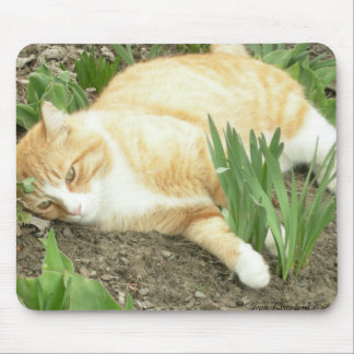 Scrapper in the garden mouse pad