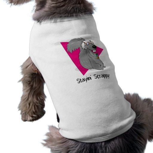 Scrappy the Squirrel Pet Clothing