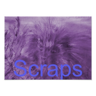 'Scraps' Cover Page Poster