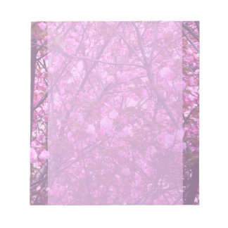 Scratch Pad with Cherry Blossoms Photo