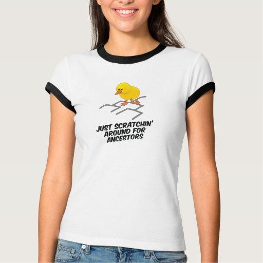 Scratchin alrededor camisas